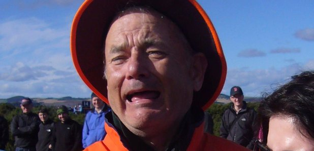 Bill Murray or Tom Hanks